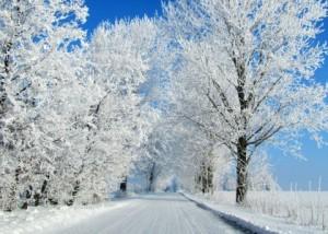 winter-Tyszowce-Lublin-Voivodeship-Poland